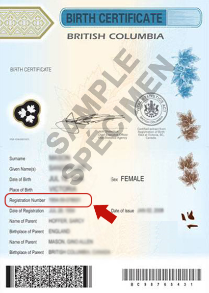 Where Is My Status In Canada Document Number